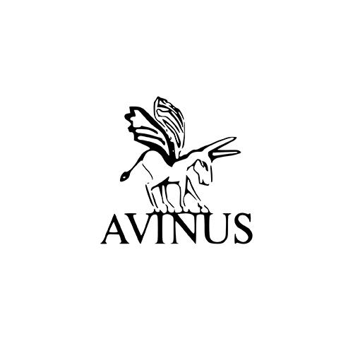 logo avinus